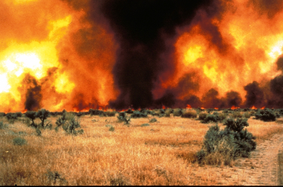 A wildfire decimates the plains of the midwest.