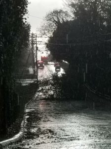 Many roads were blocked after the storm.